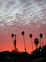 114. Sunset, North Hollywood